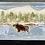 Thumbnail: West Ten Lake Moose
