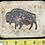 Thumbnail: Copper Bison