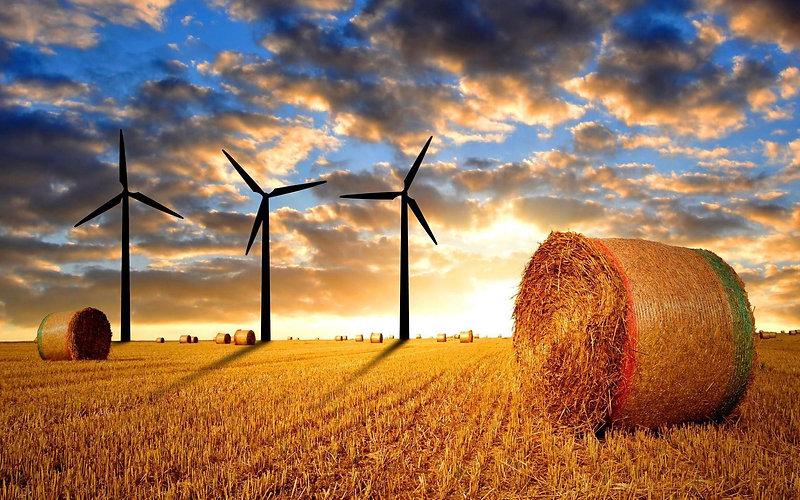 wind hay.jpg