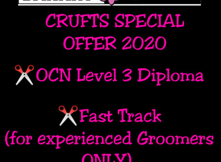 CRUFTS 2020 SPECIAL OFFER