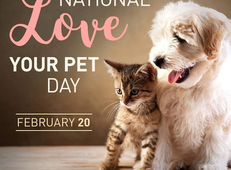 International LOVE your PET Day