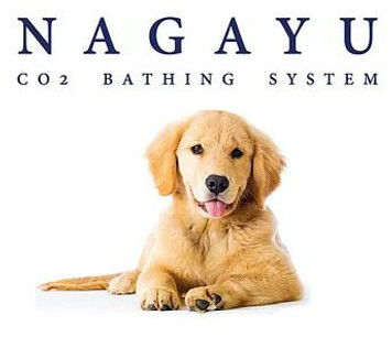 Nagayu Spa Treatment