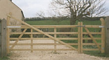 5-bar-high-heal-gate.jpg