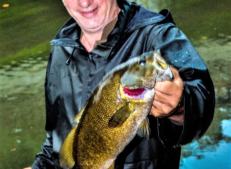 Stream Smallmouth Bass Migrations