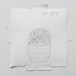lil' guy
