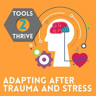 Trauma and Stress@2x-100.jpg