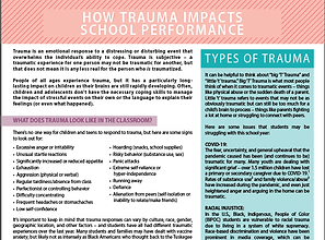 Effects of Trauma on school performance.png