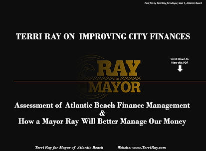 Terri Ray Thoughts On Improving City Fin