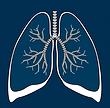 Airtight on Asbestos Logo