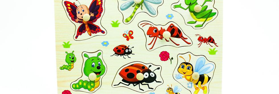 Bug Peg Puzzle