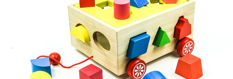 Pull Along Wagon & Blocks Miniature Toy