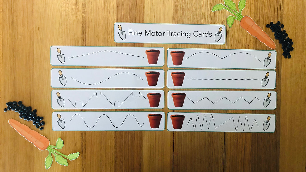Fine Motor Tracing Cards