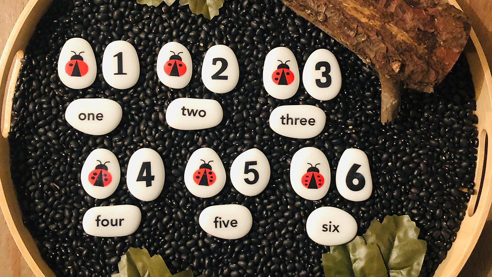Lady Bug Counting - Story Stones