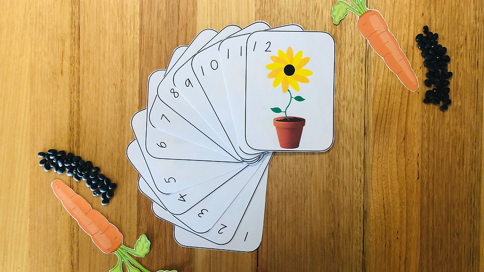 Petal Counting Flashcards