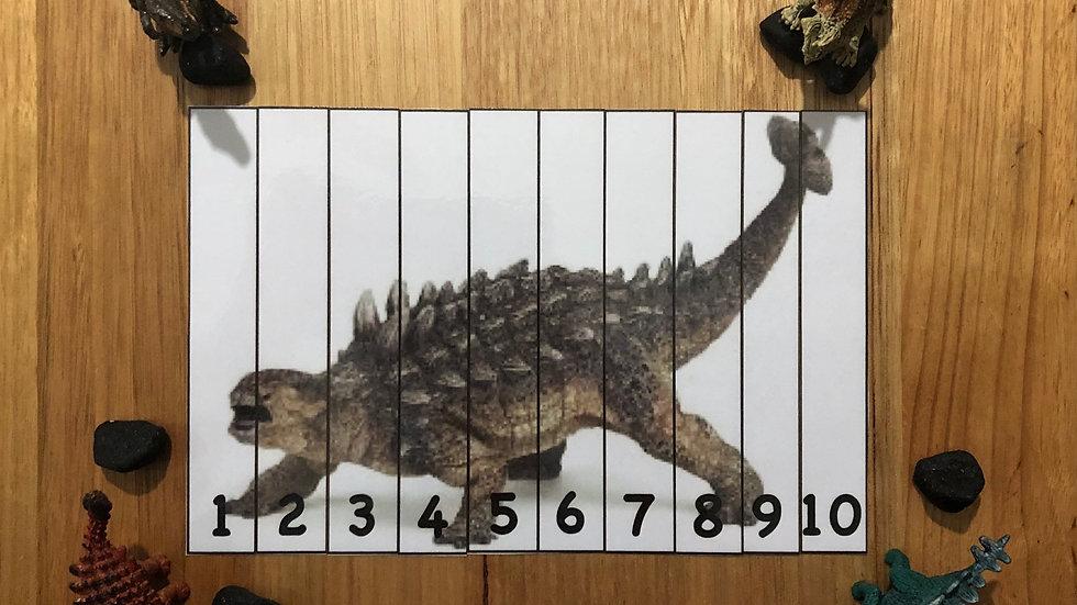 Cognitive Numeracy Puzzle