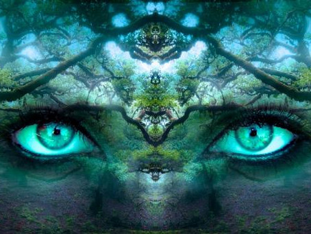 Cosmic Crystal Wisdom: Labradorite