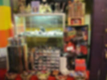 shoppe interiror2.jpg