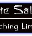 Elite Sabre Coaching Limited Logo