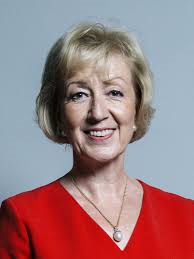 Open Letter to Andrea Leadsom