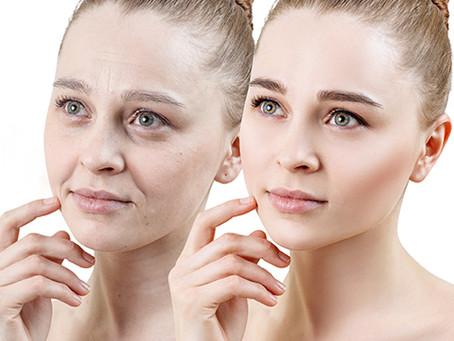 AC-11と共に肌老化を防ぐメロングリソディン