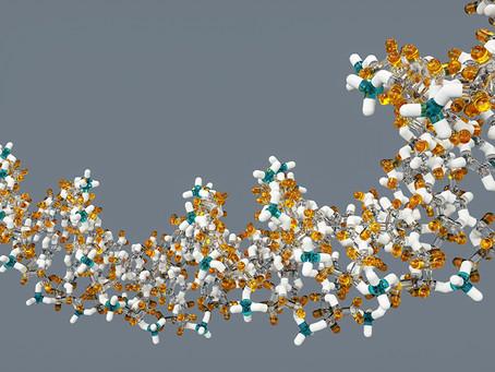 DNA、遺伝子、染色体について