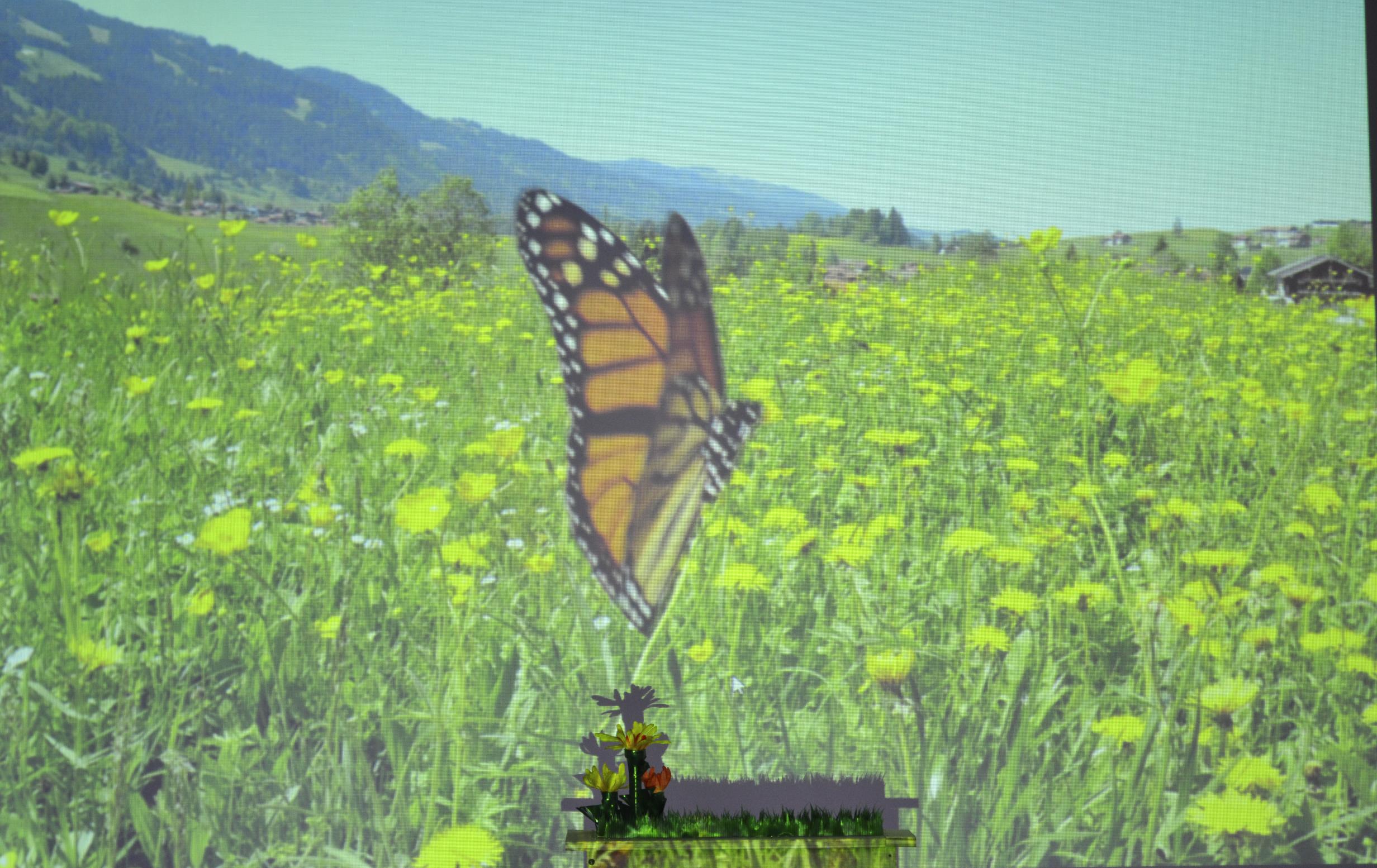 Nature Simulation