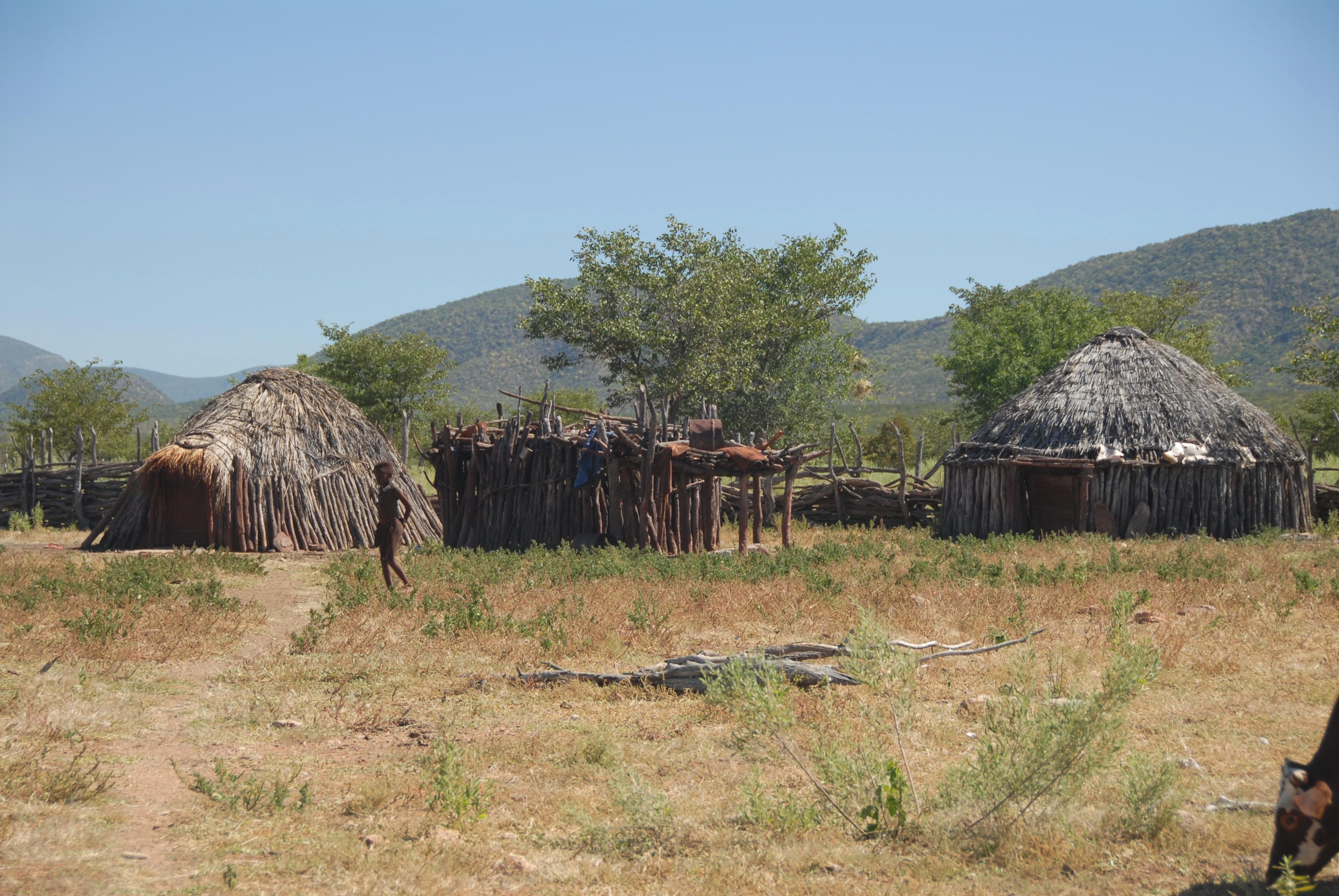 Safaris - photos en Afrique - 206.jpg
