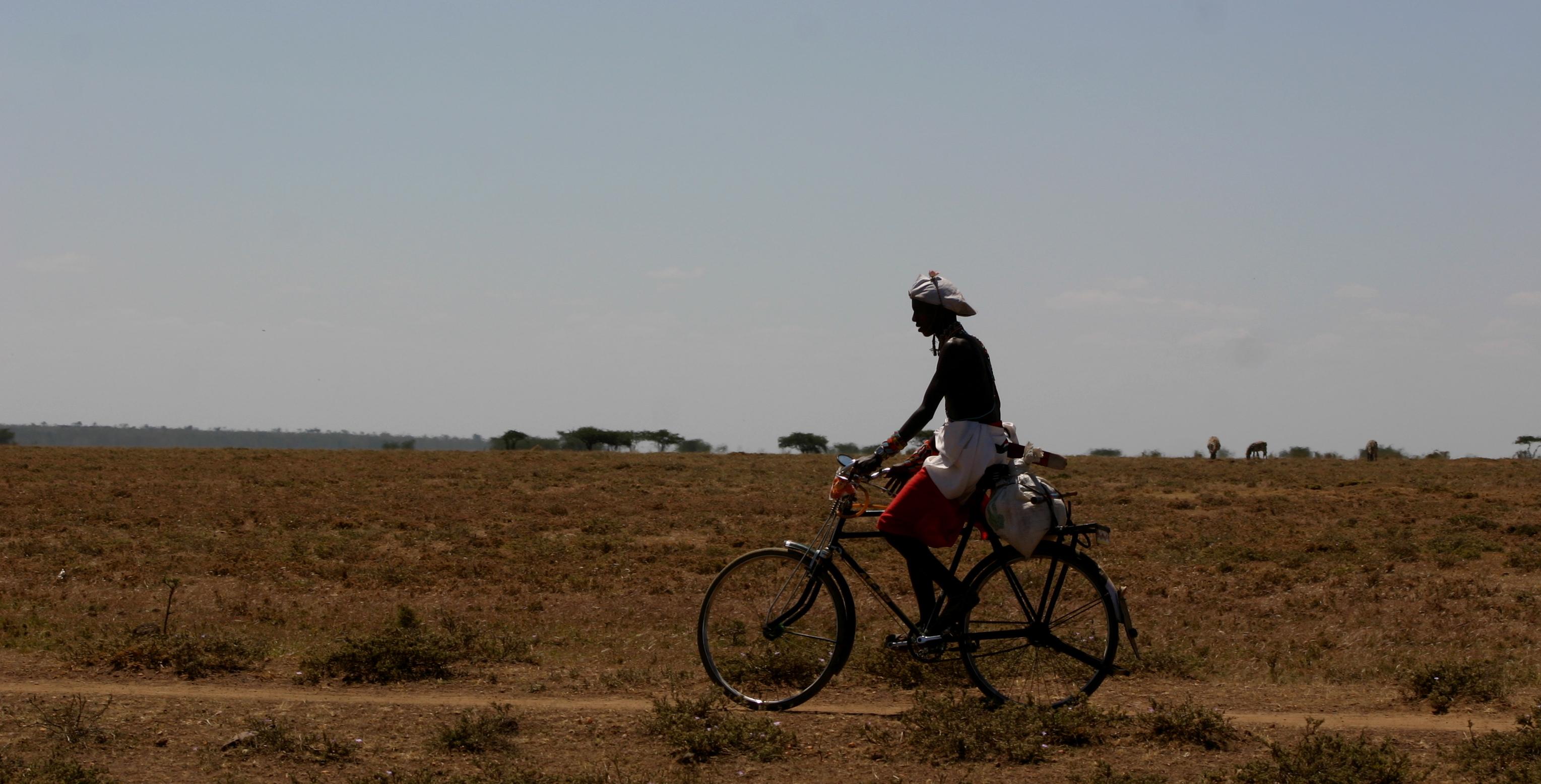 Safaris - photos en Afrique - 068.jpg