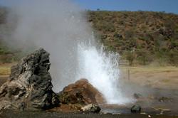 Safaris - photos en Afrique - 078.jpg