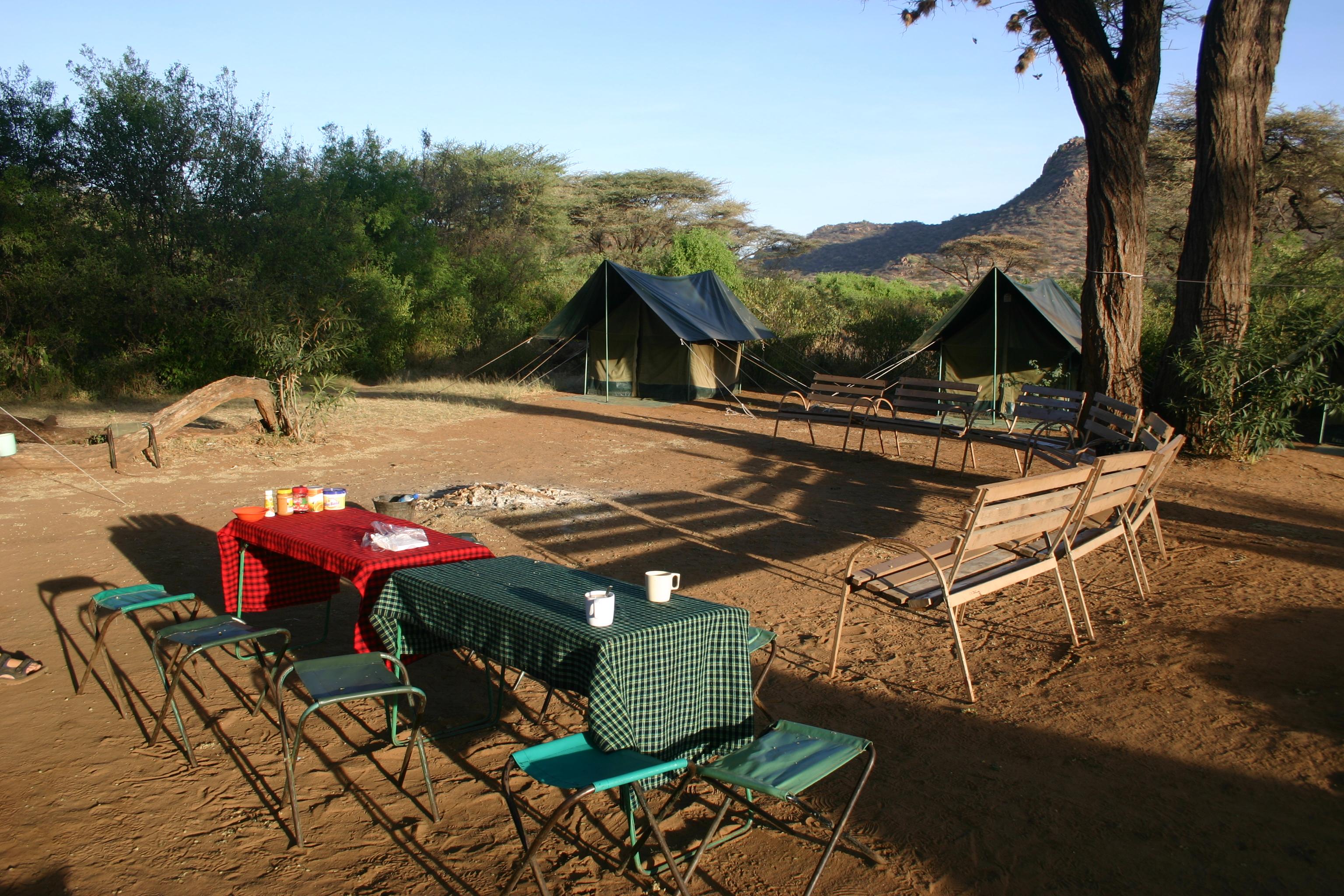 Safaris - photos en Afrique - 065.jpg
