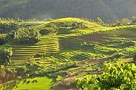 Voyage sur mesure au Vietnam