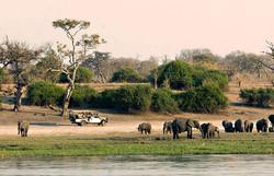 Chobe_National_Park_028.jpg