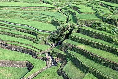 Philippines - 091.jpg
