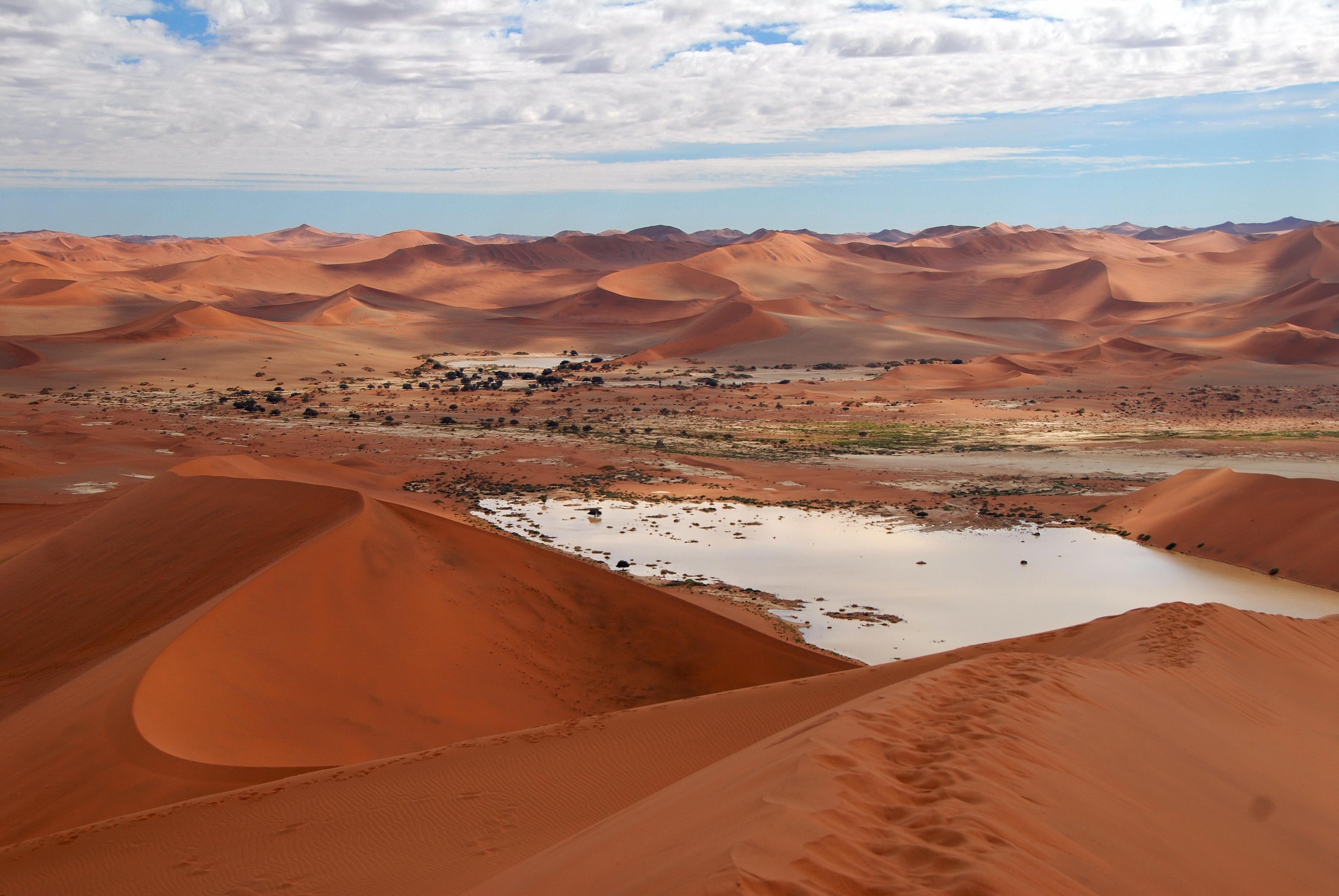 Couleurs australes en Namibie - 61.jpg