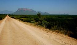 Safaris - photos en Afrique - 067.jpg
