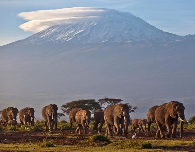 kilimandjaroicheluchainefileswordpresscomuew.jpg