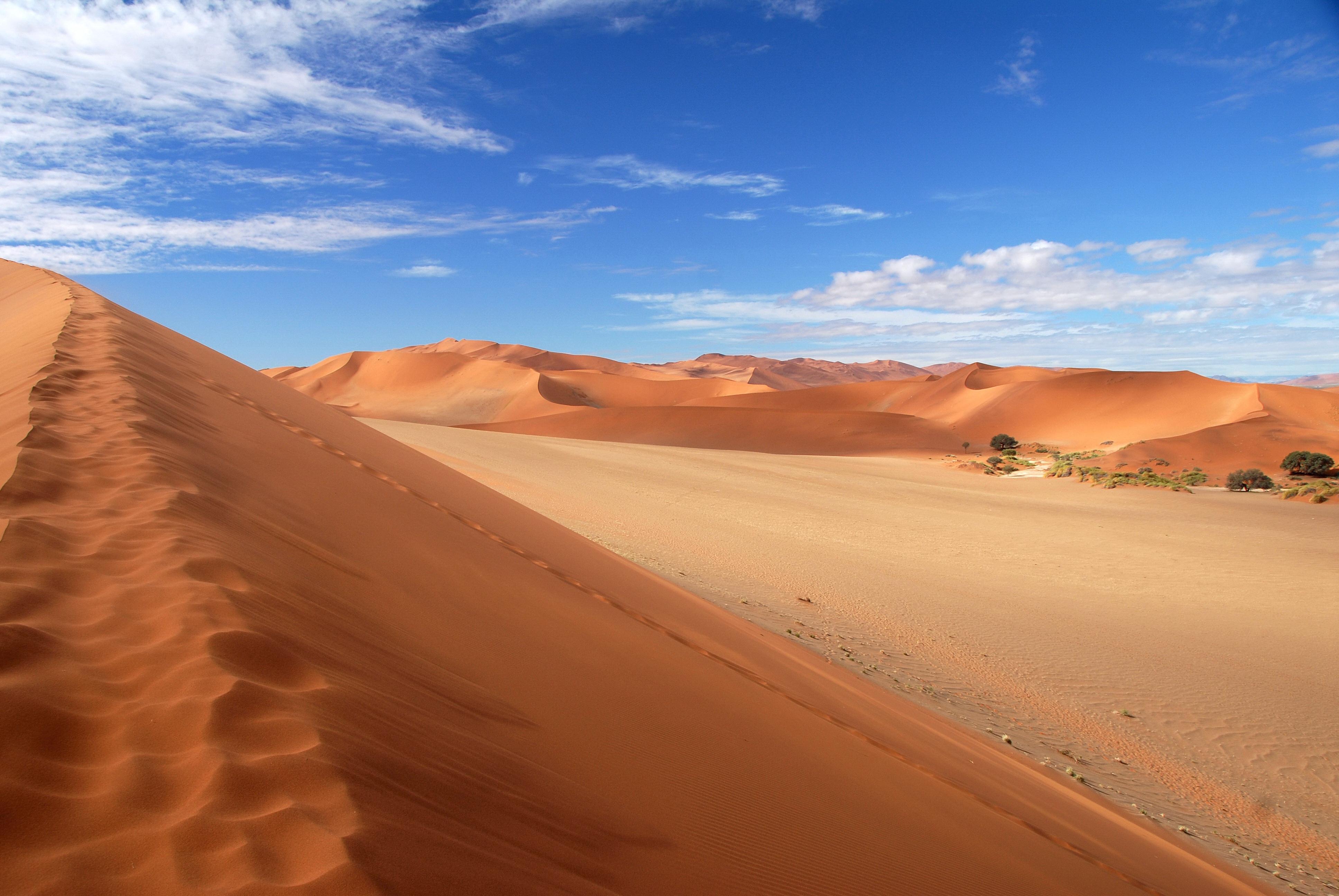Couleurs australes en Namibie - 72.jpg