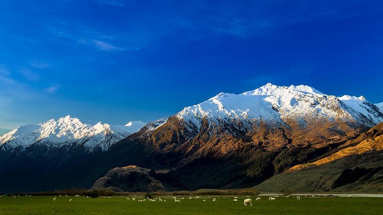 Mount Aspiring National Park.jpg