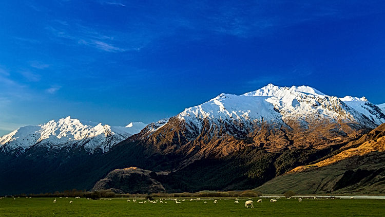 Mount Aspiring National Park.jpg