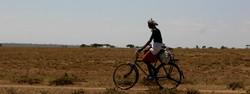 Safaris - photos en Afrique - 068_edited.jpg