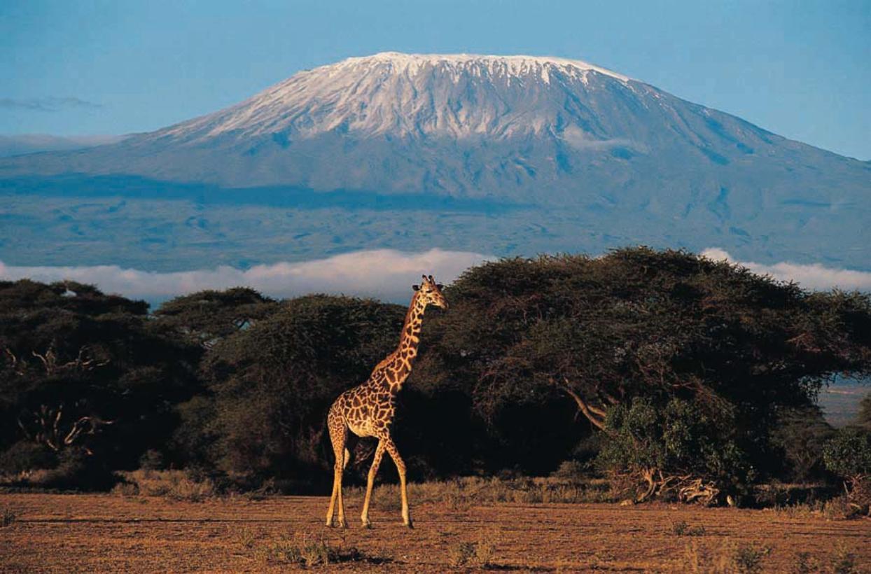mont-kilimandjaro-002.jpg