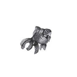 My Fish, Lumpy by Kate Ashton