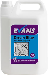 Evans Hand cleaners Ocean Blue.jpg