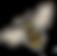スクリーンショット 2019-06-14 13.30.34のコピー.png