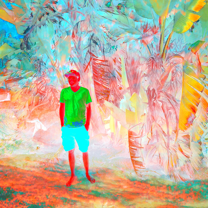 Wild Imagination Green