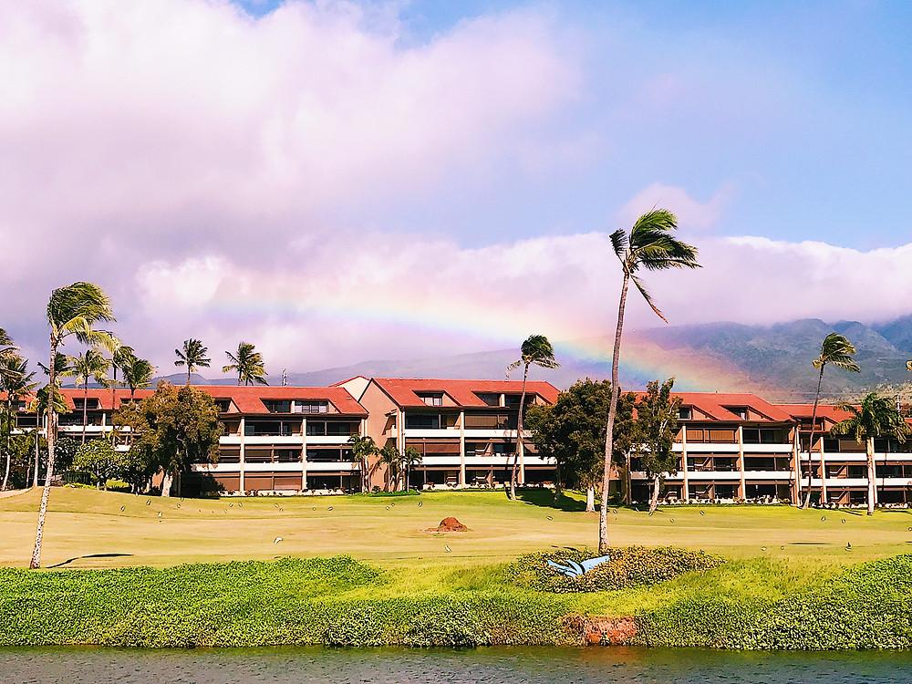 rainbow in Maui Hawaii