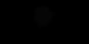 logo_RitterHoft_avec_étoile(Petit_format