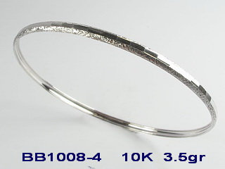 BB1008-4