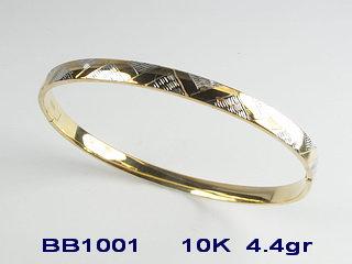 BB1001