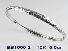 BB1005-2